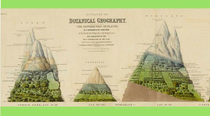 Literatura colonial, viajeros, expediciones y lengua española en América